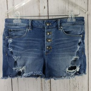 Articles of Society Distressed Jean Shorts Size 28